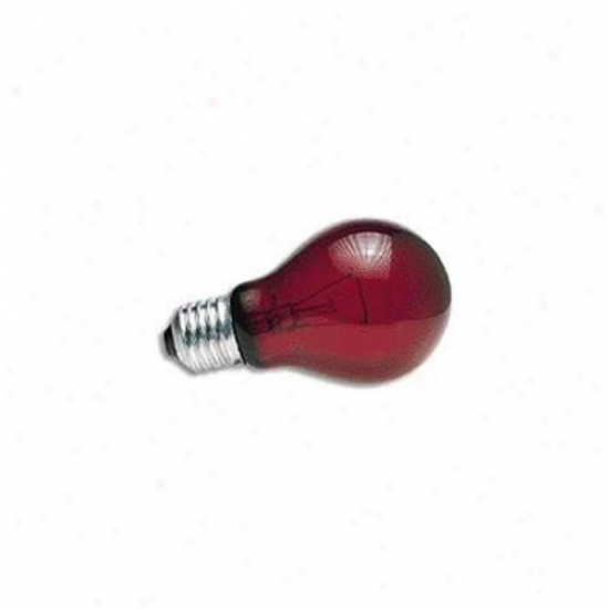 Zoo Med Labs 850-3900 Zoo Med Nightlight Red Reptile Bulb 100 Watt