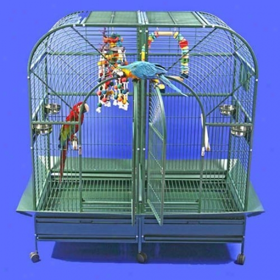 A&e Cage Co. Dome Top Style Double Macaw Bird Cage 6432