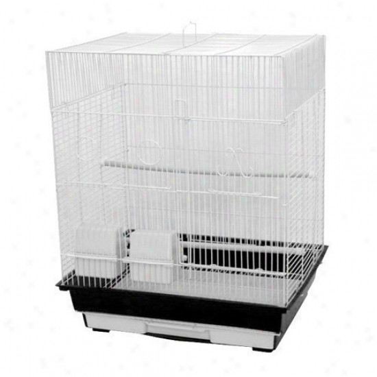 A&e Cage Co. Flat Top Fowl Cage