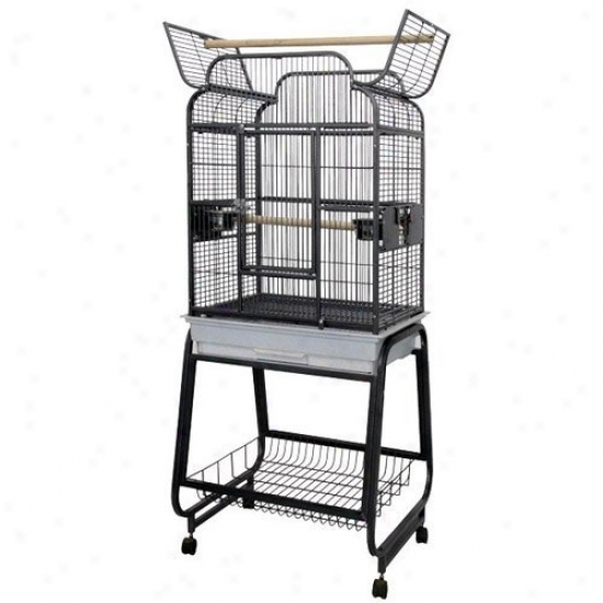 A&e Cage Co. Opening Victorian Head Bird Cage