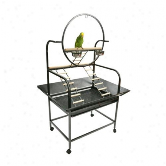 A&e Cage Co. The O Parrot Playstand