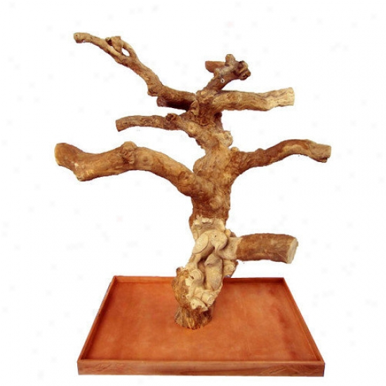 A&e Cage Co. Carved Single Java Wood Tree