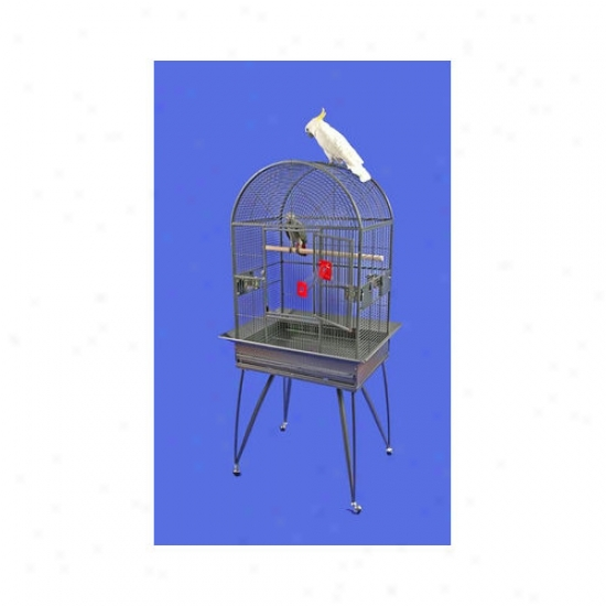 A&e Cage Co. Large Dome Top Bird Cage With Removable Base