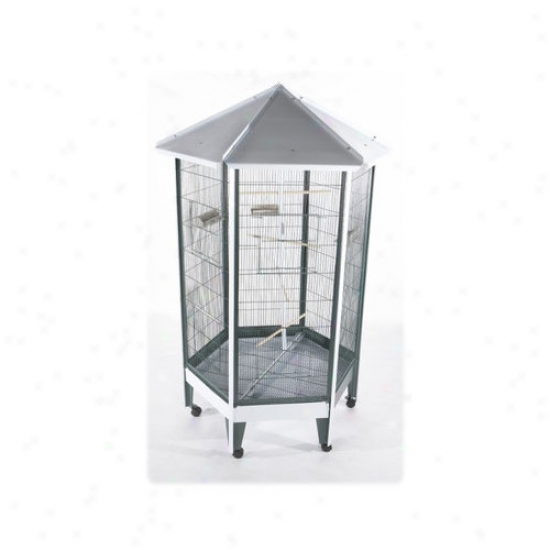 A&e Cage Co. Large Hexagonal Aviary