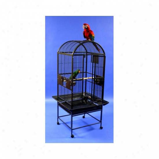 A&e Cage Co. Medium Dome Top Brid Cage