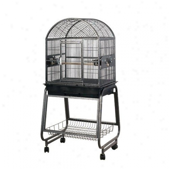 A&e Cage Co. Medium Dome Top Style Bird Cage And Stand