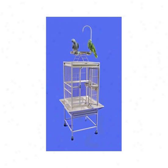 A&e Cage Co. Medium Play Top Bird Cage