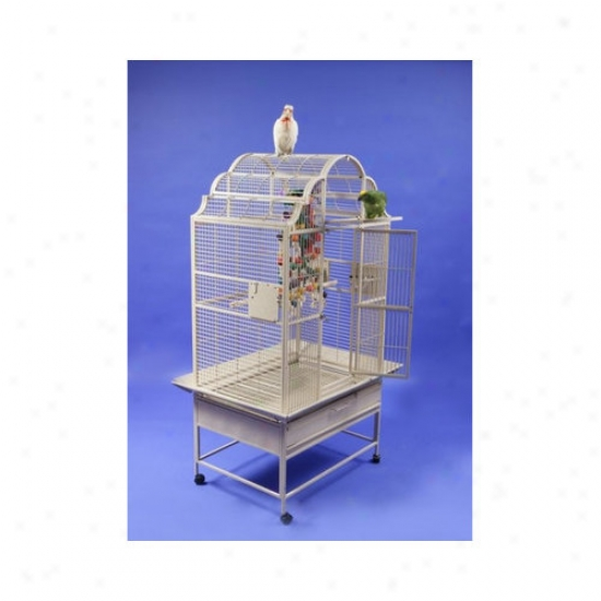 A&ampp;e Cage Co. Medium Victorian Top Bird Cage