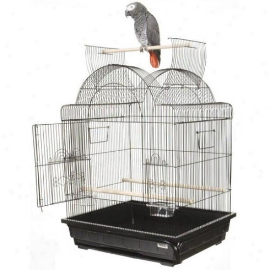 A&e Cage Co. Open Top Victorian Small Bird Cage