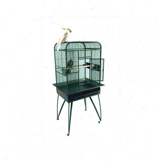 A&e Cage Co. Opening Flat-top Bird Cage With Removable Base