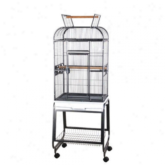 A&e Cage Co. Opening Round Play Top Bird Cage And Stand