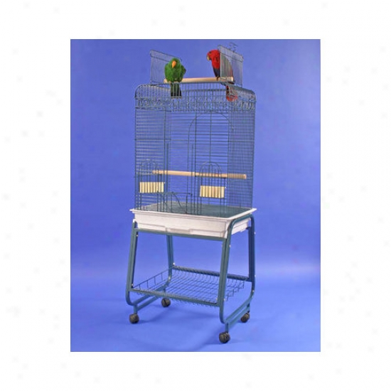 A&e Cagd Co . Play Top Bird Cage With Plastic Base