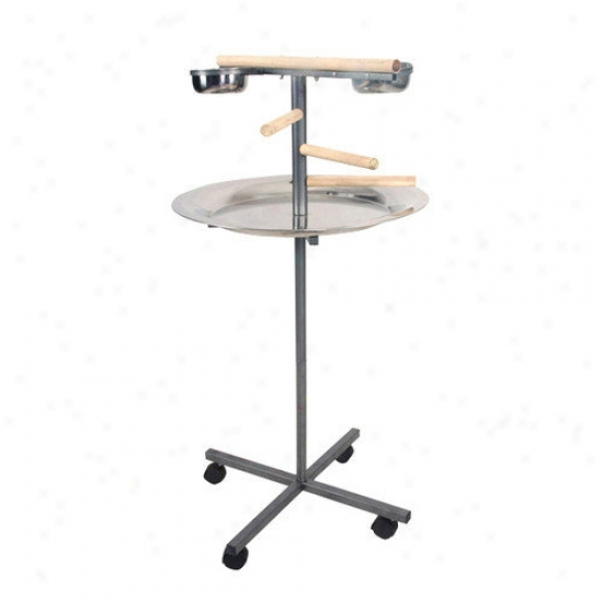 A&e Cage Co. Round Play Stand With Wooden Steps