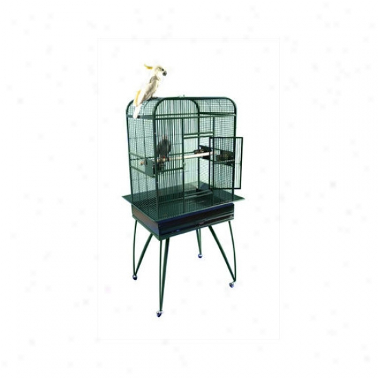 A&e Cage Co. Small lPay Top Bird Cage With Removable Inferior