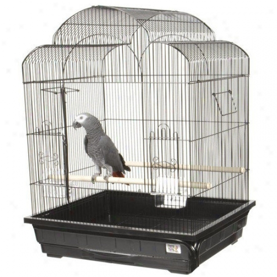 A&e Cage Co. Victorian Small Bird Cage