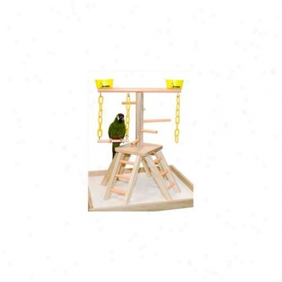 Ciatec Pb 20 20 Inch Pyramid With Base