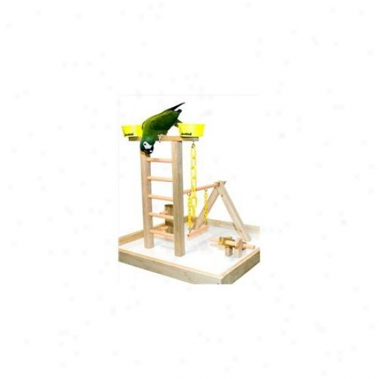 Caitec Pg 20 20 Inch Playground With Base