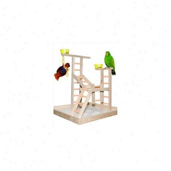 Caitec Pl 20 20 Inch Playland With 2 Cups And Chains