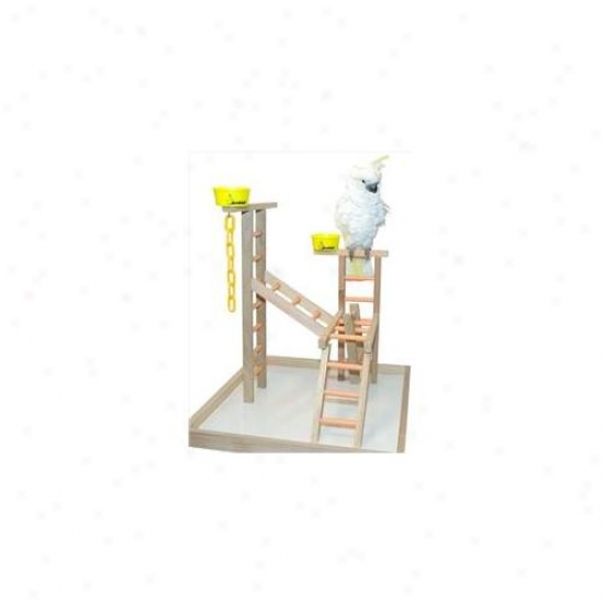 Caitec Pl 24 24 Inch Playland 2 Cups And Chains