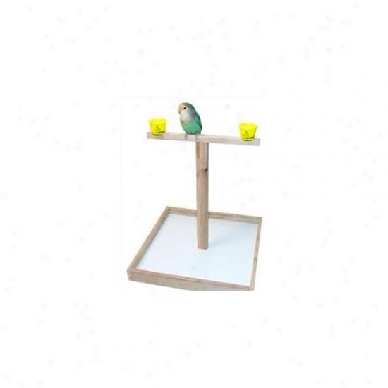 Caitec T 14 14 Inch Mini T Stand