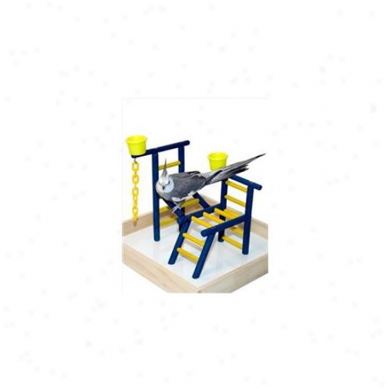 Caitec Tpl 14 Toddler 14 Inch Playland