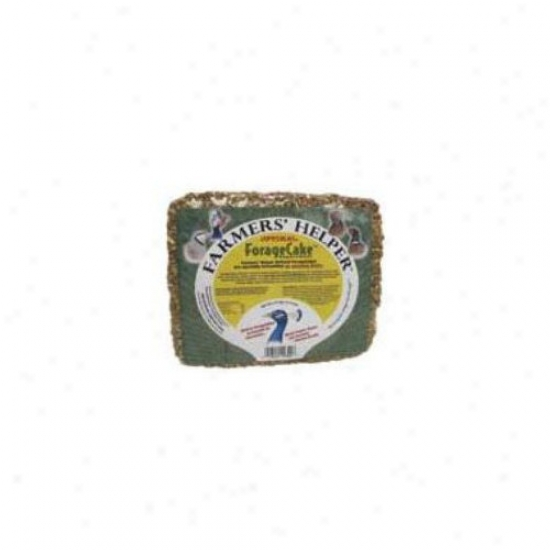 C&s Products Optimal Forage Cake For Mixed Flocks