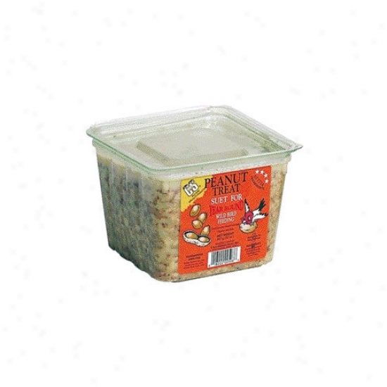 C&s Producst Peanut Treat Wild Bird Suet