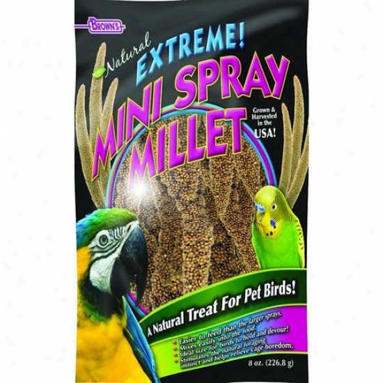 Fm Browns 42396 Extreme Natural Mini Millet Spray