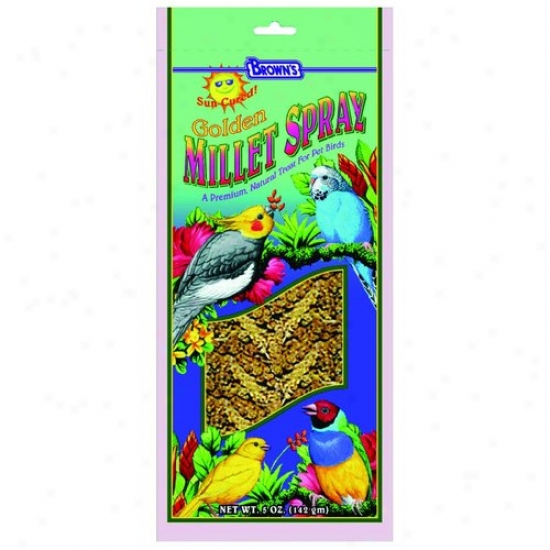 Fm Browns 42403 Gold Millet Spray