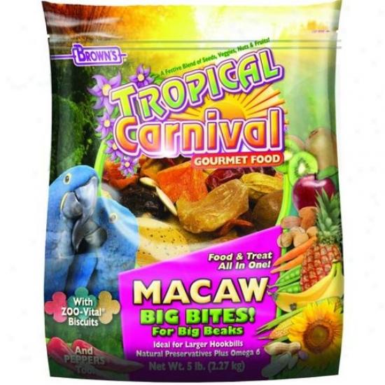 Fm Browwns 44685 Tropical Carnival Food
