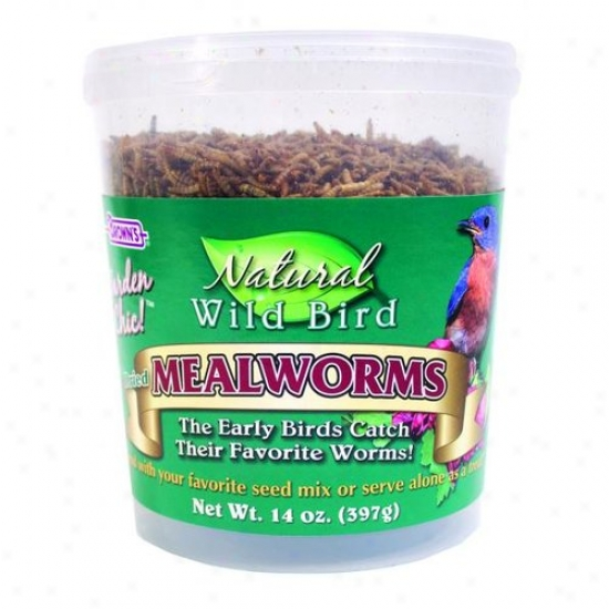 Fm Browns 44843 Natural Wild Bird Food Dried Mealworms
