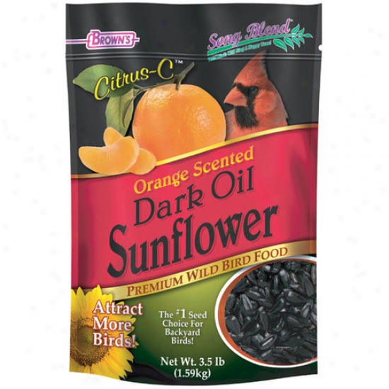 F.m. Browns Wildbird Citrus-c Premium Wild Bird Dark Oil Sunflower Seeds