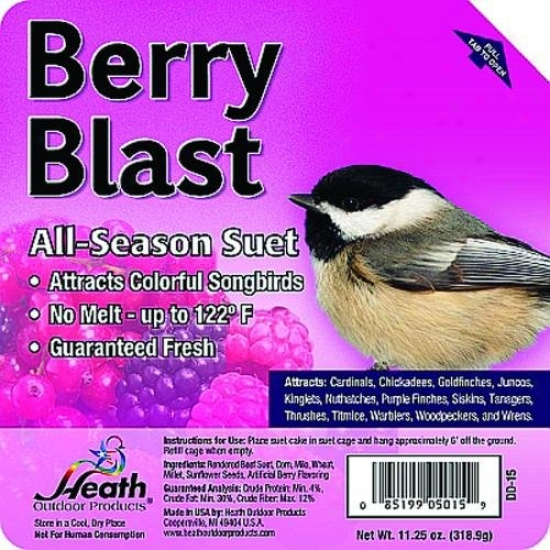 Heath Dd-15 Suet Cake, Berry Blast