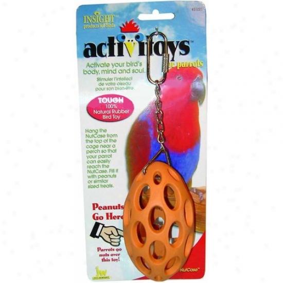Jw 31021 Activitoys Nut Case