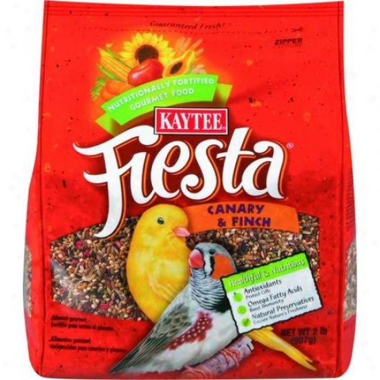 Kaytee 100031244 Fiestamax Food