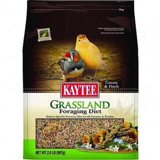 Kaytee 100510517 Foraging Diet Grassland - Canary And Finch