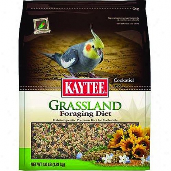 Kaytee 100510522 Foraging Dit Grassland - Cockatiel