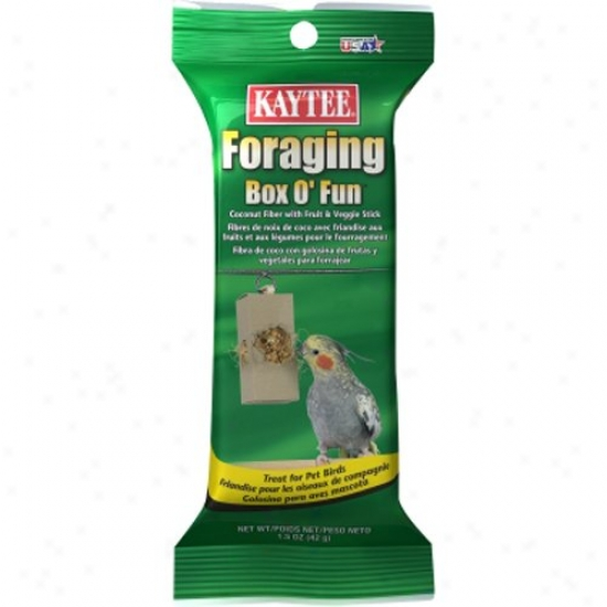 Kaytee Foraging Box O' Fun Small Bird Food Stick, 1.5 Oz