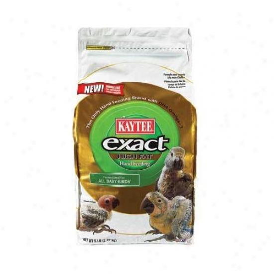 Kaytee Products Wild Bird Exact Hand Feeding High Fat Bird Food