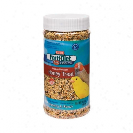 Kaytee Productss Wild Bird Forti-diet Pro Health Orange Bloseom Honey Treat