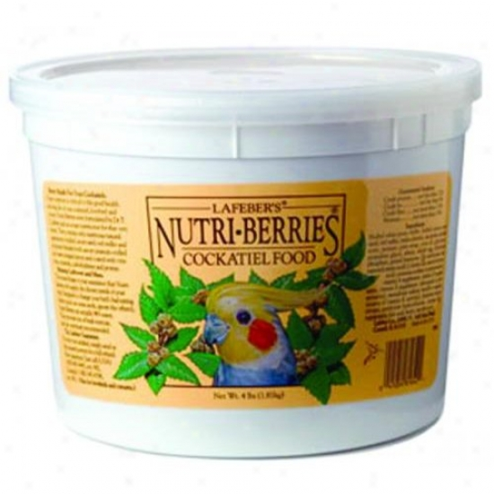 Lafeber Fellowship 81642 Classoc Nutri-berries