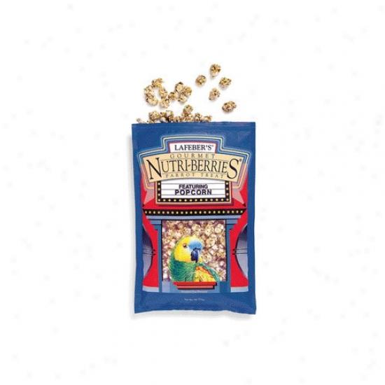 Lafebercares Large Popcorn Nutri-berries Bird Treat
