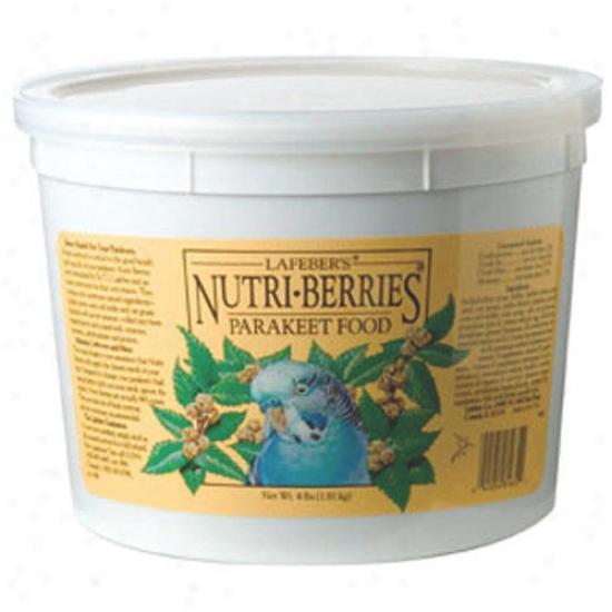 Lafebercares Nutri-berries Parakeet