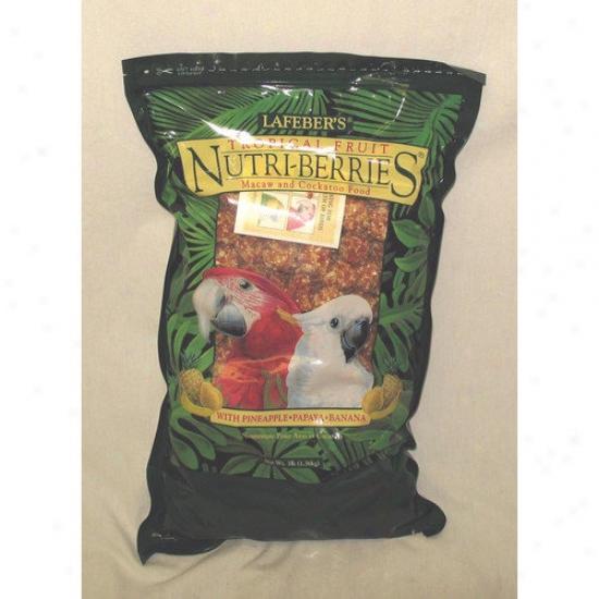 Lafebercares Tropical Fruit Nutri-berries