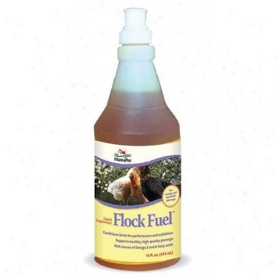 Manna Pro-farm Flock Fuel Liquid Poultry Supplement - 16 Oz.