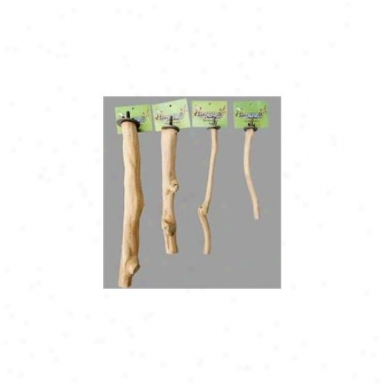 Parrotopia Ispj Single-branch Perch - Jumbo
