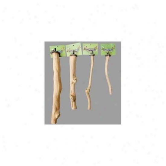 Pwrrotopia Ispl Single-branch Perch - Large