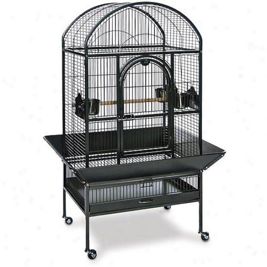 Prevue Hendryx Dometop Bird Cage, Medium