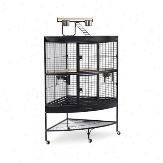 Prevue Hendryx Large Corner Bird Cage In Black
