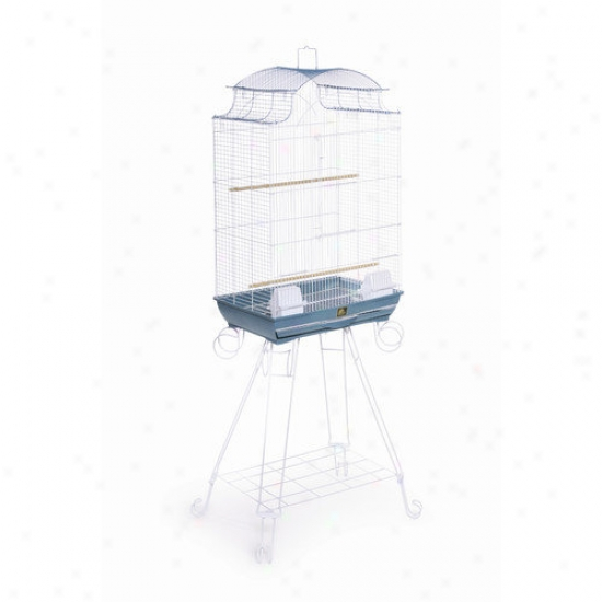 Prevue Hendryx Pagoda Top Bird Cage In Azure / White